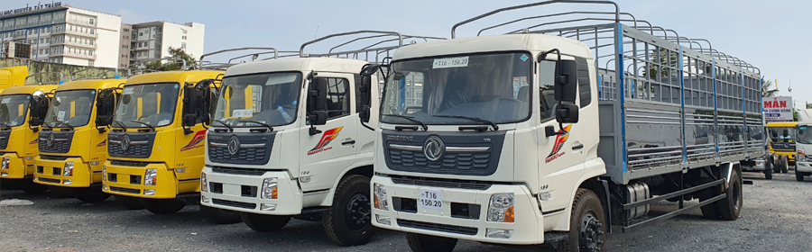 DONGFENG.png
